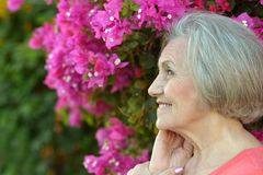 Portrait of an older woman Stock Image