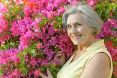 Portrait of an older woman Royalty Free Stock Image
