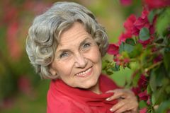 Portrait of an older woman Stock Images