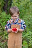 Portrait of one cute boy in a hat in the garden with a red apple, emotions, happiness, food. Autumn harvest of apples royalty free stock photos
