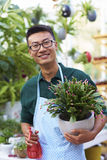 Portrait of One Happy Young Male Florist in Shop. One Young Happy Asian Male Florist Working in Shop Stock Photos