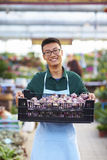 Portrait of One Happy Young Male Florist in Shop. One Young Happy Asian Male Florist Working in Shop Royalty Free Stock Image