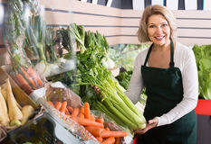 Portrait of ordinary woman working in grocery Royalty Free Stock Images