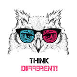 Portrait of the owl in the colored glasses. Think different. Vector illustration. Royalty Free Stock Photos