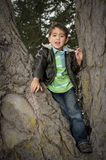 Portrait of Pacific Islander boy siting in tree Royalty Free Stock Photography