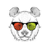 Portrait of the panda in the colored glasses. Think different. Vector illustration. Stock Photos