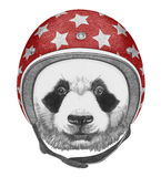 Portrait of Panda with Helmet. Hand drawn illustration Royalty Free Stock Images