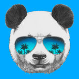 Portrait of Panda with mirror sunglasses. Hand drawn portrait of Panda with mirror sunglasses. Vector isolated elements Stock Image