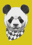 Portrait of Panda with scarf. Hand drawn illustration Stock Photography
