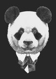 Portrait of Panda in suit. Hand drawn illustration Royalty Free Stock Photography