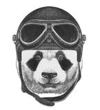 Portrait of Panda with Vintage Helmet. Hand drawn illustration Stock Photo