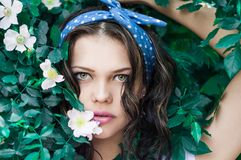 Portrait Photo of Woman in White Top and Blue Polka Dot Headband Near Flowers royalty free stock images