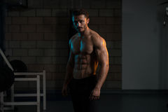 Portrait Of A Physically Fit Muscular Young Man Royalty Free Stock Photos
