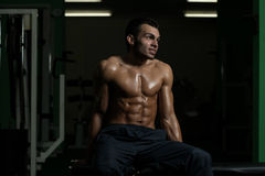 Portrait Of A Physically Fit Young Man Stock Photos