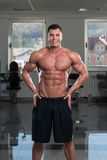 Portrait Of A Physically Fit Young Man Royalty Free Stock Image