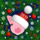 Portrait of a pig. Head in the New Years hat. The frame of the branches of the Christmas tree and holly. Christmas toys, royalty free illustration