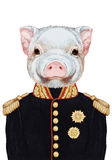 Portrait of Piggy in military uniform. Stock Photos