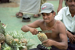 Portrait of Pineapple seller in port Dhaka Bangladesh Royalty Free Stock Image