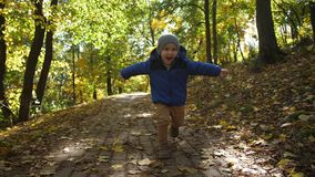 Portrait of cheerful toddler boy running in park stock video