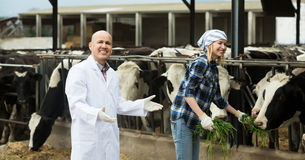 Portrait of positive cowgirl and doctor Royalty Free Stock Photo
