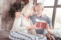 Portrait of positive elderly couple hugging each other royalty free stock photo