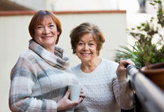 Portrait of positive female pensioners drinking tea and smiling Royalty Free Stock Images