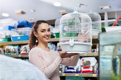 Portrait of positive girl choosing bird cage Stock Photography