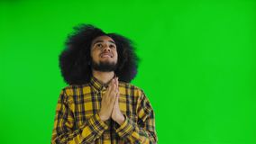 Portrait of praying african american guy keeping fingers crossed and screaming god please on green screen or chroma key. Background. Concept of emotions 4K stock video footage