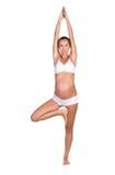 Portrait  pregnant woman Stock Image