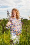 Pregnant woman on the  field Royalty Free Stock Photos