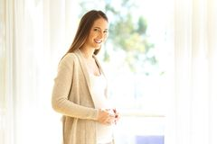 Pregnant woman looking at you at home. Portrait of a pregnant woman looking at you standing near a window at home Royalty Free Stock Photography