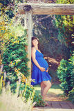 Portrait of pregnant woman in park outside stock photography