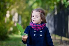 Portrait of preschooler girl in the autumn park. Young toddler girl walking outdoor Royalty Free Stock Photography