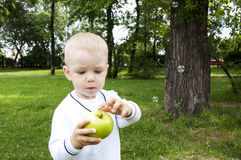 Portrait of a preteen boy with a apple. In his hand and green grass in the background Royalty Free Stock Images