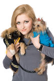 Portrait of pretty blonde with two dogs. Isolated Stock Photos