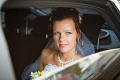 Portrait of a pretty bride Royalty Free Stock Photo