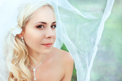 Portrait of pretty bride Stock Photos