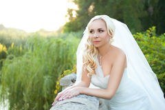 Portrait of pretty bride Stock Images