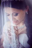 Portrait of pretty bride with veil Stock Photos