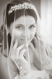 Portrait of pretty bride with veil Royalty Free Stock Images