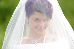 Portrait of pretty brunette bride Royalty Free Stock Image