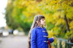 Portrait of a pretty child girl with yellow leaves Royalty Free Stock Photos
