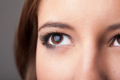 Portrait of a pretty girl  close up eye Stock Photo