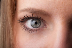 Portrait of a pretty girl  close up eye Royalty Free Stock Photos