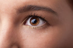 Portrait of a pretty girl  close up eye Royalty Free Stock Photography