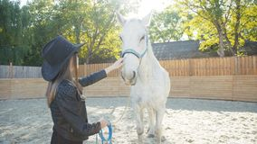 Portrait of pretty girl in the hat caressing with smile a white horse stock video