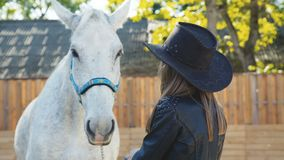 Portrait of pretty girl in the hat caressing with smile a white horse stock video footage