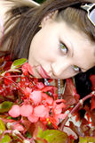 Portrait pretty green eyed brunette Royalty Free Stock Photo