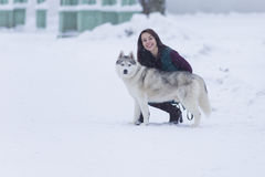 Portrait of Pretty Smiling Woman Hugging Her Husky  Dog Outside. Stock Photo