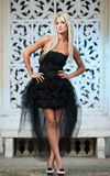 Portrait of pretty woman standing in black elegant dress outdoors Stock Photos